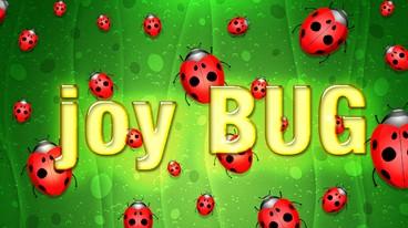 Joy Bug