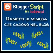 Rametti di mimosa che cadono nel blog