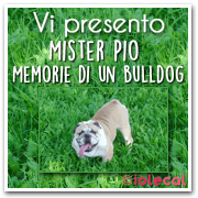 Mister Pio Memorie di un bulldog